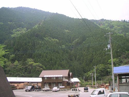山にぐるりと囲まれた上勝町。四国で一番小さな町に、元気な町づくりの秘訣が詰まっている。