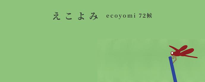 ecoyomi_10