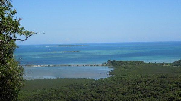 沖縄のサンゴが危ない! 海水温上昇で大規模白化が続く