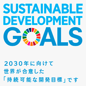 SDGs Icon